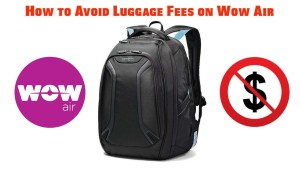 How to Avoid Baggage Fees on Wow Air
